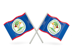 FREE VOIP Phone Calls to Belize