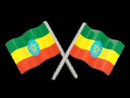 FREE VOIP Phone Calls to Ethiopia