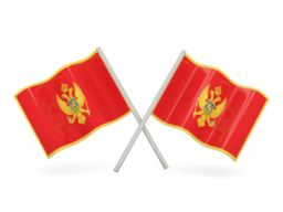 FREE VOIP Phone Calls to Montenegro